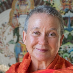 Conflict Is A Gateway For Healing with Isa Gucciardi, Ph.D.