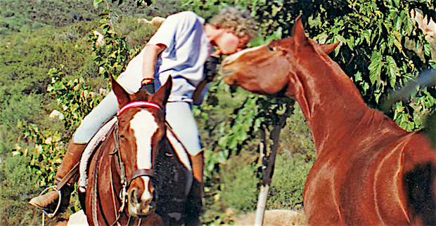 Editor's Desk: Encounter With A Horse In A Bar