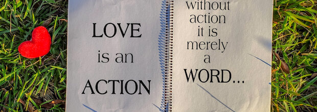 Spotlight: Love & Compassion Must Be Embedded in Action